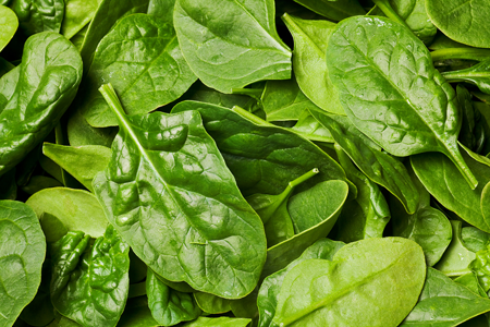 spinach_fresh